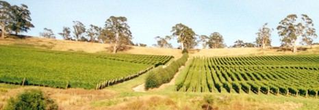 http://www.winelistaustralia.com.au/ - Clover Hill - Tasting Notes On Australian & New Zealand wines