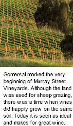 http://www.murraystreet.com.au/ - Murray Street - Tasting Notes On Australian & New Zealand wines