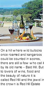 http://www.redhillestate.com.au/ - Red Hill Estate - Tasting Notes On Australian & New Zealand wines