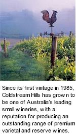 http://www.coldstreamhills.com.au/ - Coldstream Hills - Tasting Notes On Australian & New Zealand wines