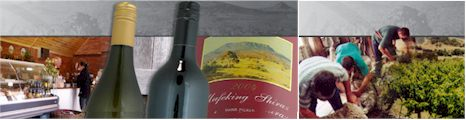 http://www.grampiansestate.com.au/ - Grampians Estate - Tasting Notes On Australian & New Zealand wines