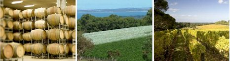 http://www.portphillip.net/ - Port Phillip Estate - Tasting Notes On Australian & New Zealand wines