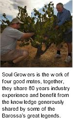 http://www.soulgrowers.com/ - Soul Growers - Tasting Notes On Australian & New Zealand wines