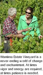 http://www.wantirnaestate.com.au/ - Wantirna Estate - Tasting Notes On Australian & New Zealand wines