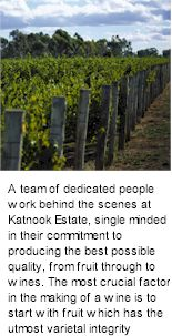 http://www.katnookestate.com.au/ - Katnook - Tasting Notes On Australian & New Zealand wines